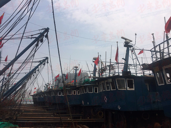 青岛市海洋伏季休渔明日开始 为期3个月(图)
