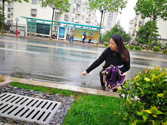 文昌路—会呼吸的城市道路 青岛首条海绵城市改造道路竣工